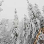 Кадастровые работы в Петрозаводске